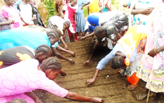 """Participants during practical's on sowing of seeds at Hai zira """"2"""" vegetable group"""