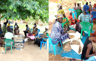 Assessment of livelihood groups in Isoko cell, at Isoko Ward